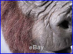 Planet of the Apes Mask Hollywood Memorabillia