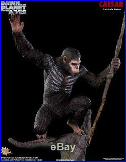 Pop Culture Dawn of the Planet of the Apes Caesar 14 Scale Statue Exclusive AP